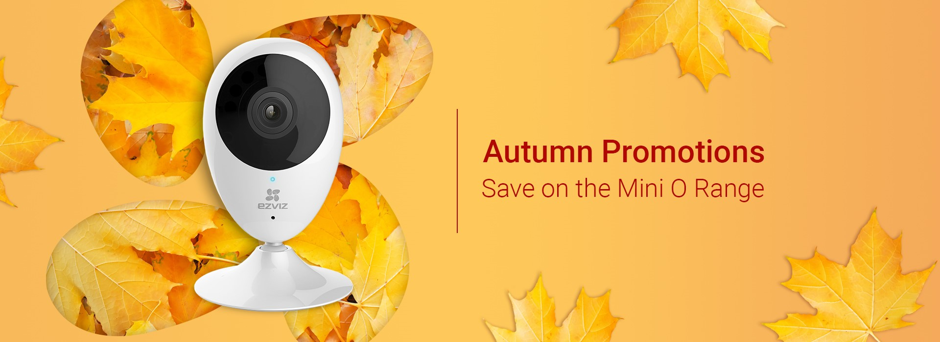 Autumn Promotions